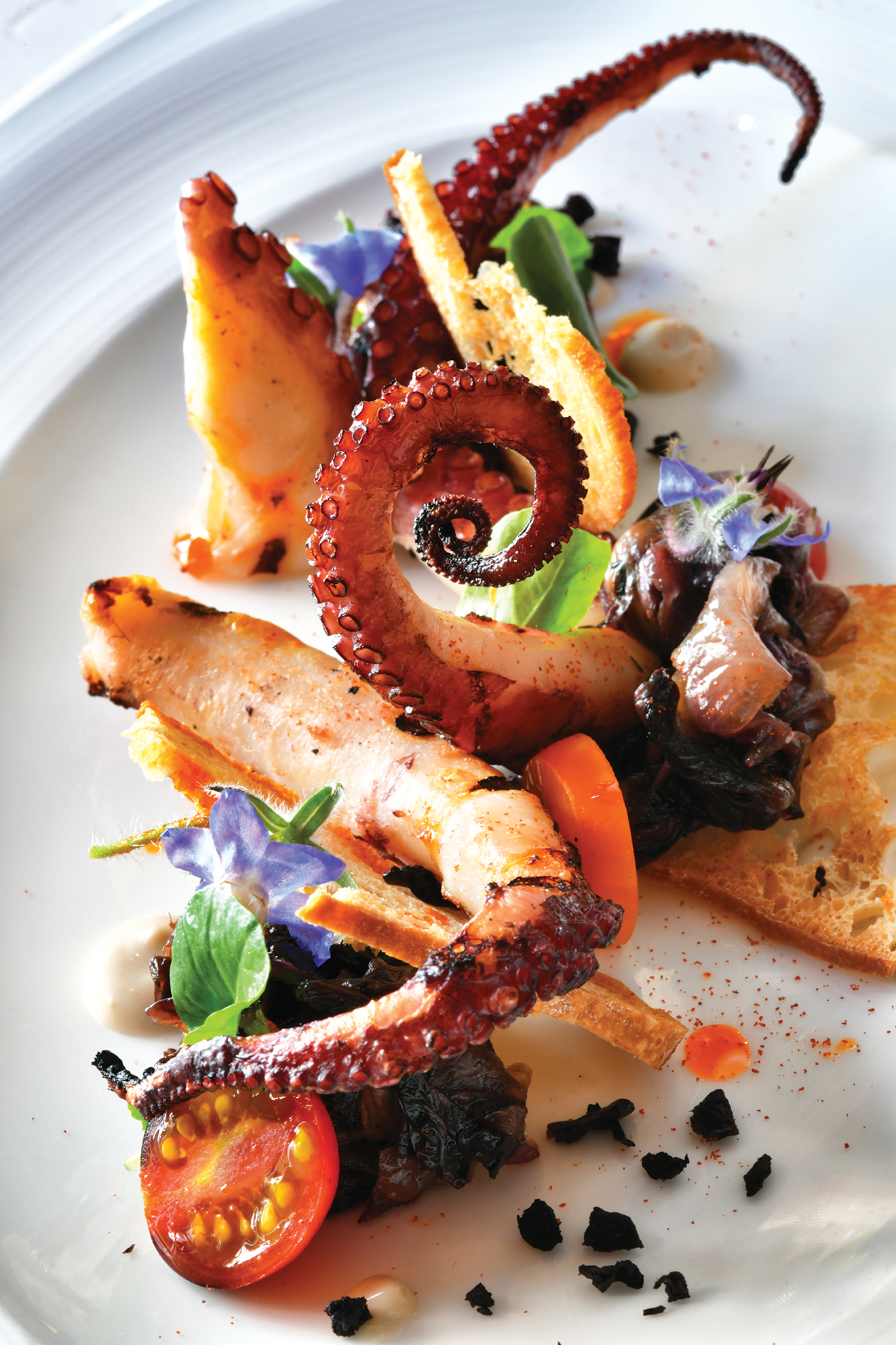 grant grill octopus san diego restaurant dining
