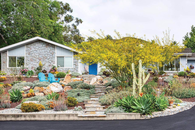 DIY landscape succulents