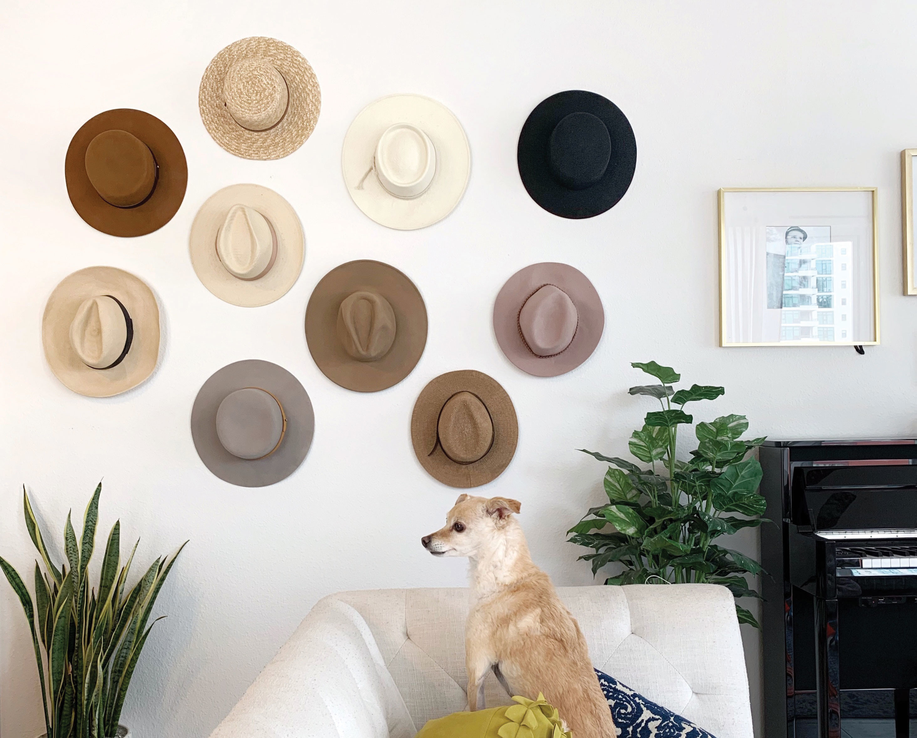 Stefanie Bales hat collections hats on wall