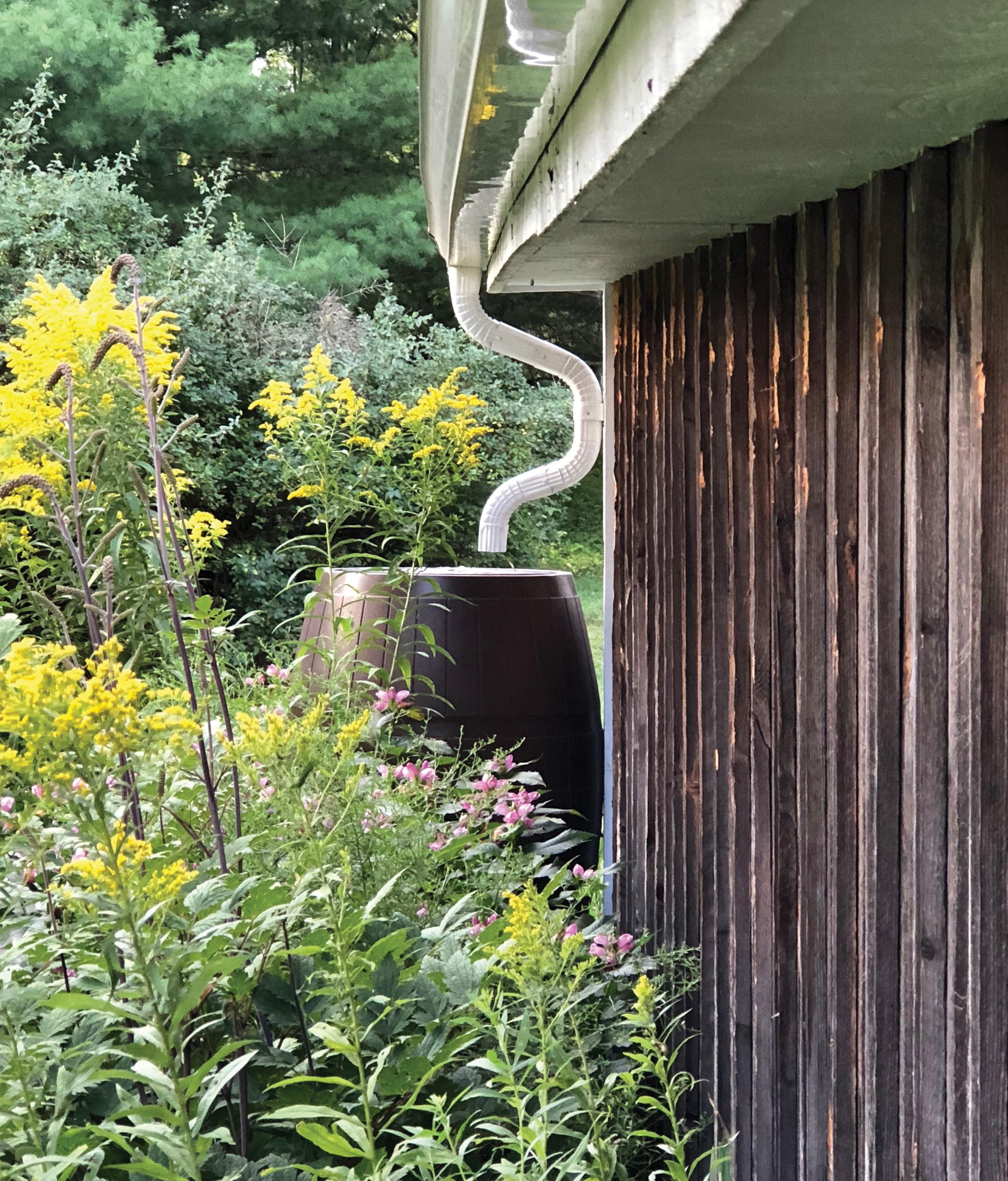 rain barrel rain gutter garden rain prep