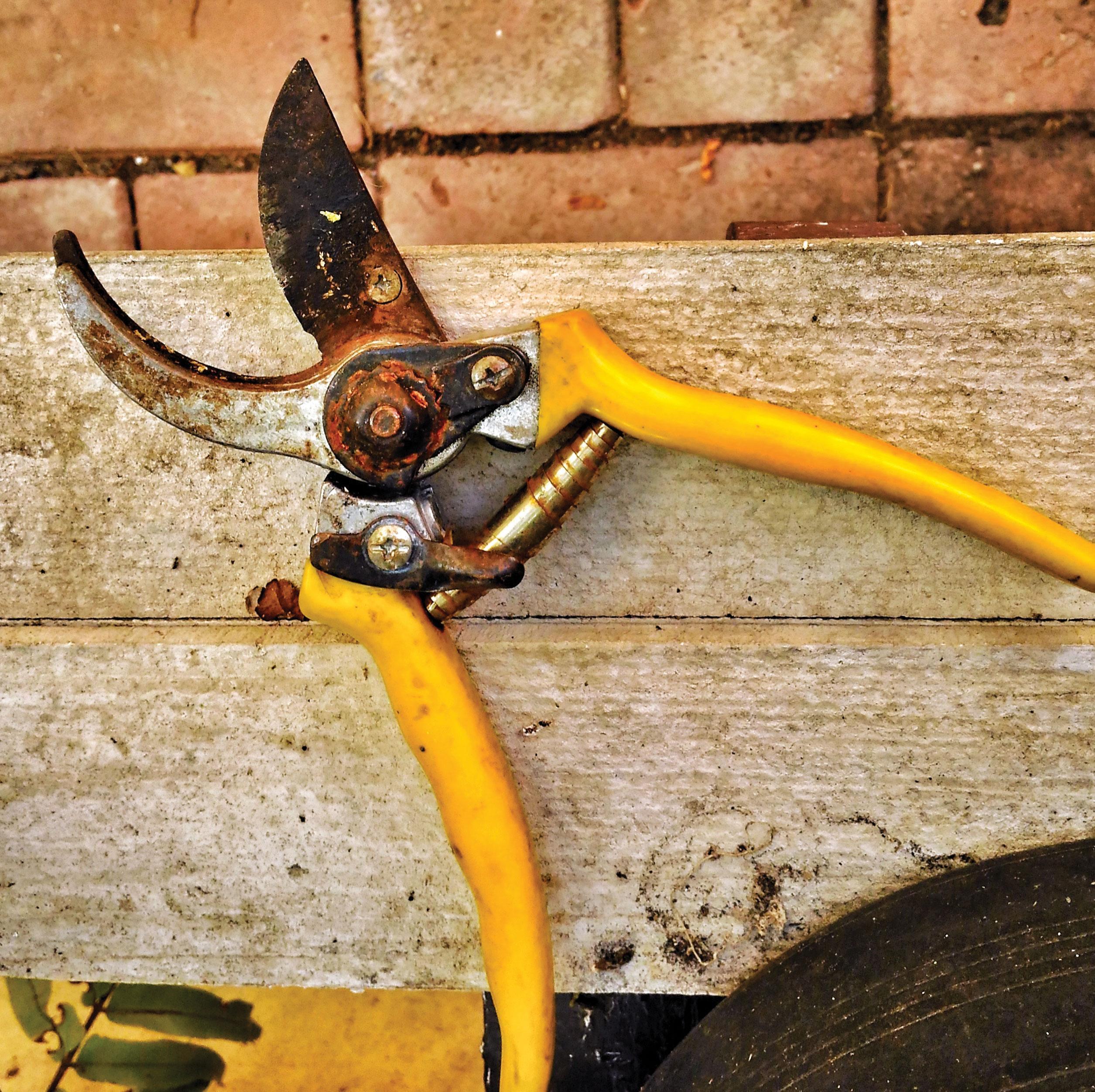 garden tool rain prep