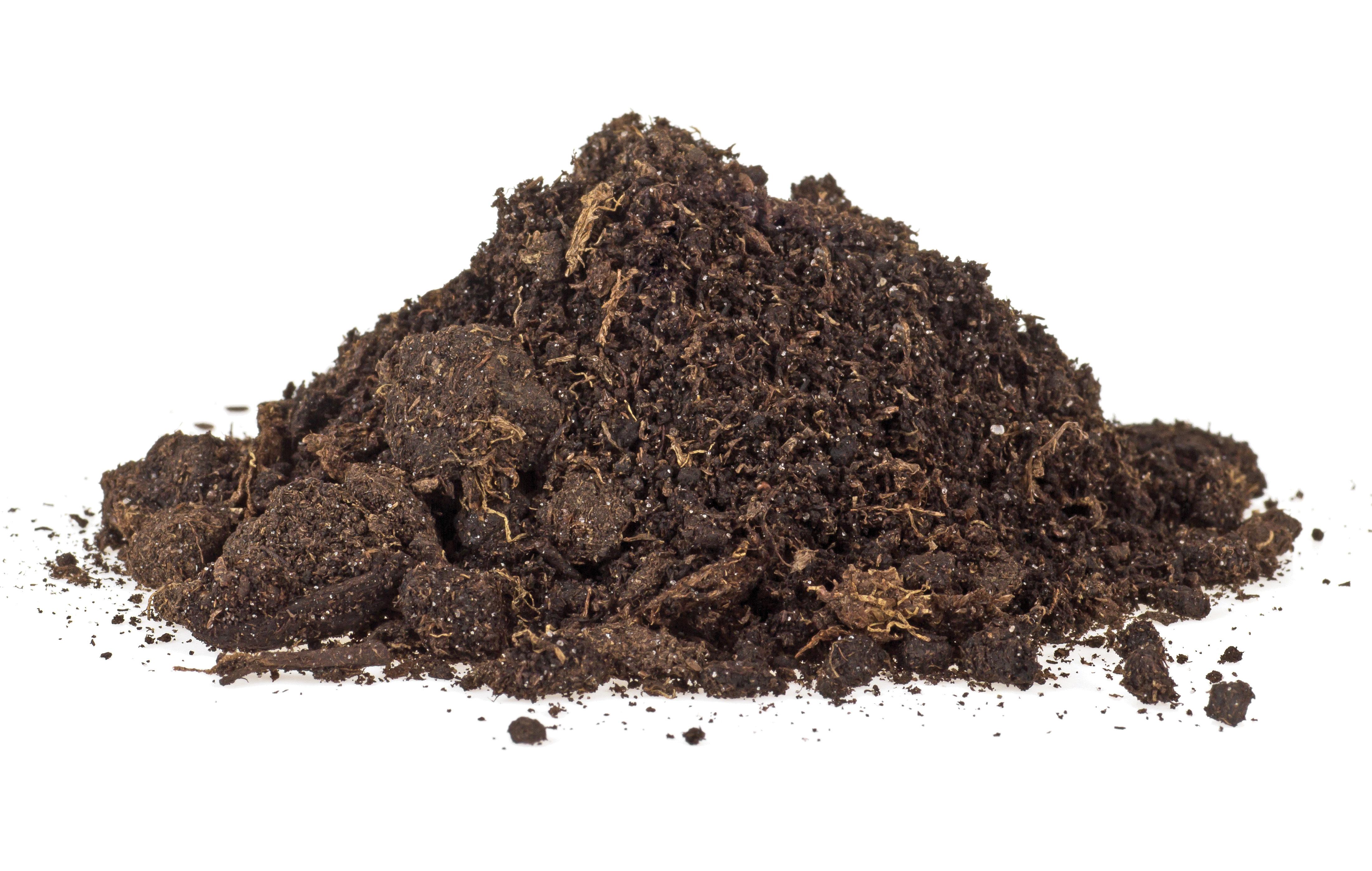 garden rain prep soil profile san diego