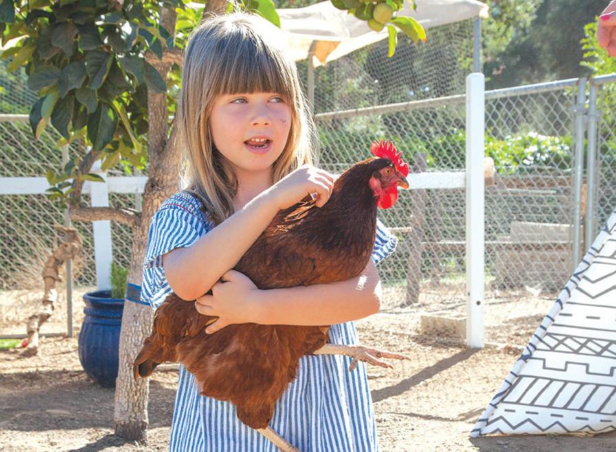 kids gardening backyard chickens gardens children