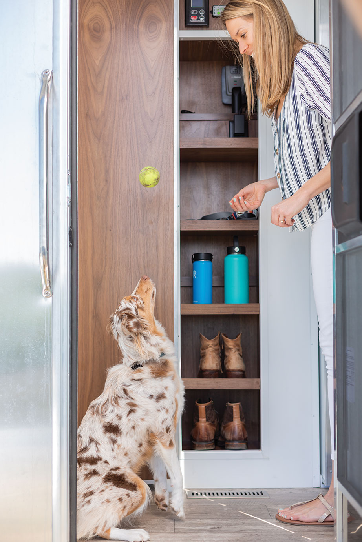living vehicle trailer tiny house puppy dog miniature australian shepherd