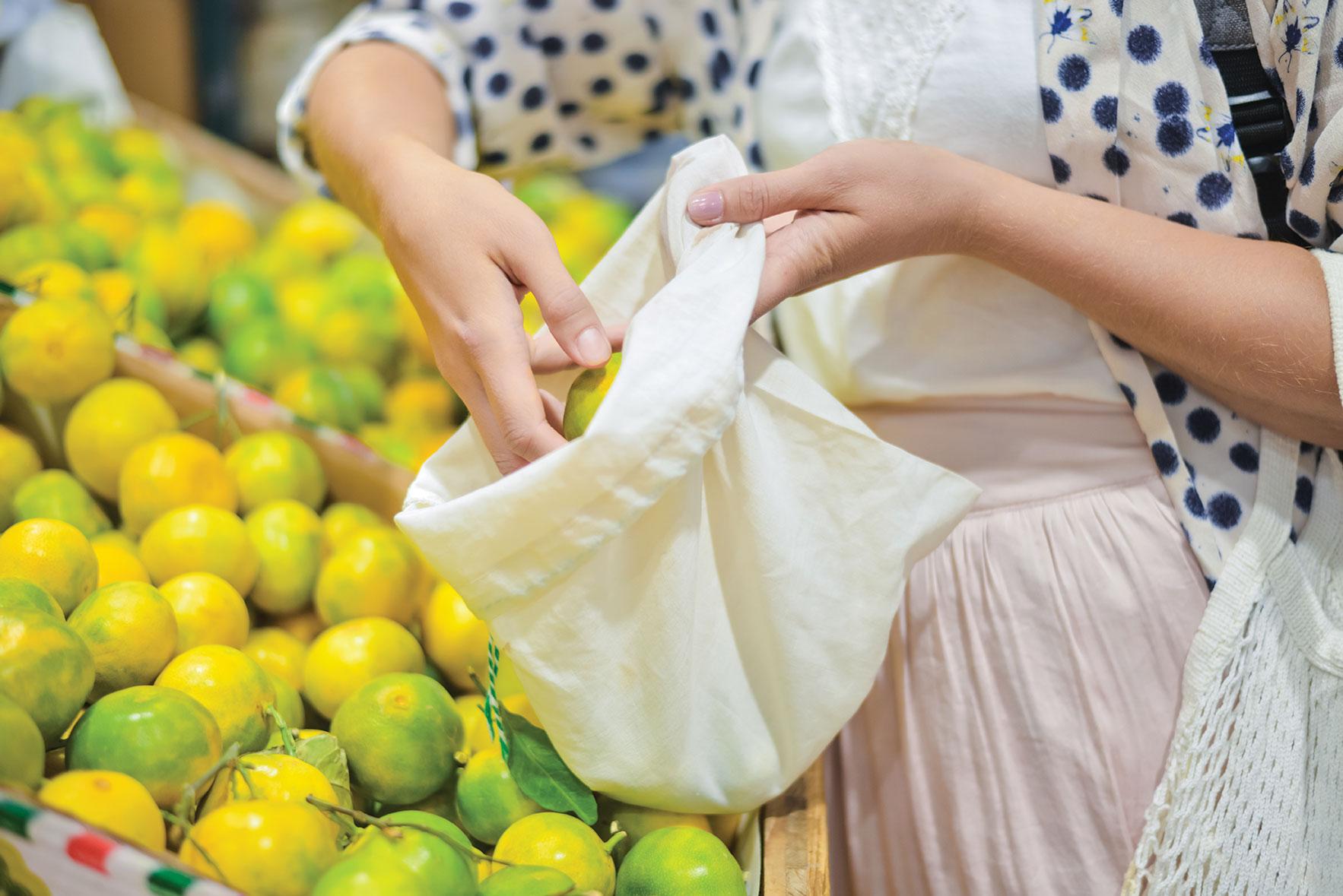 kait schulhof san diego sustainability canvas reusable produce bags