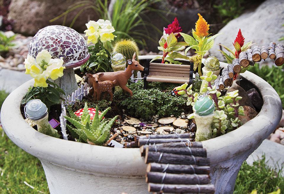 Fairy Garden 101 San Diego Home Garden Lifestyles