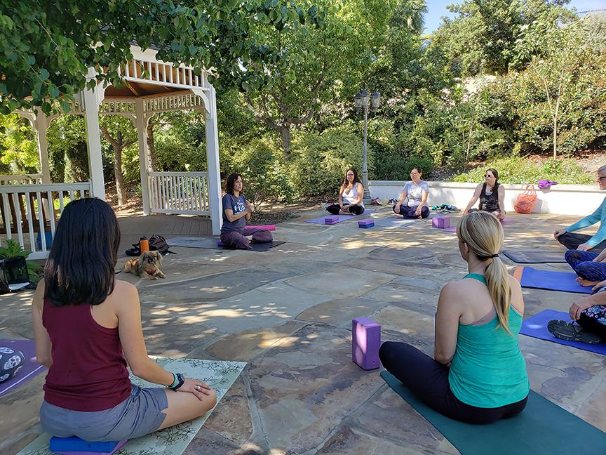 water conservation garden yoga jackie gadd san diego garden events