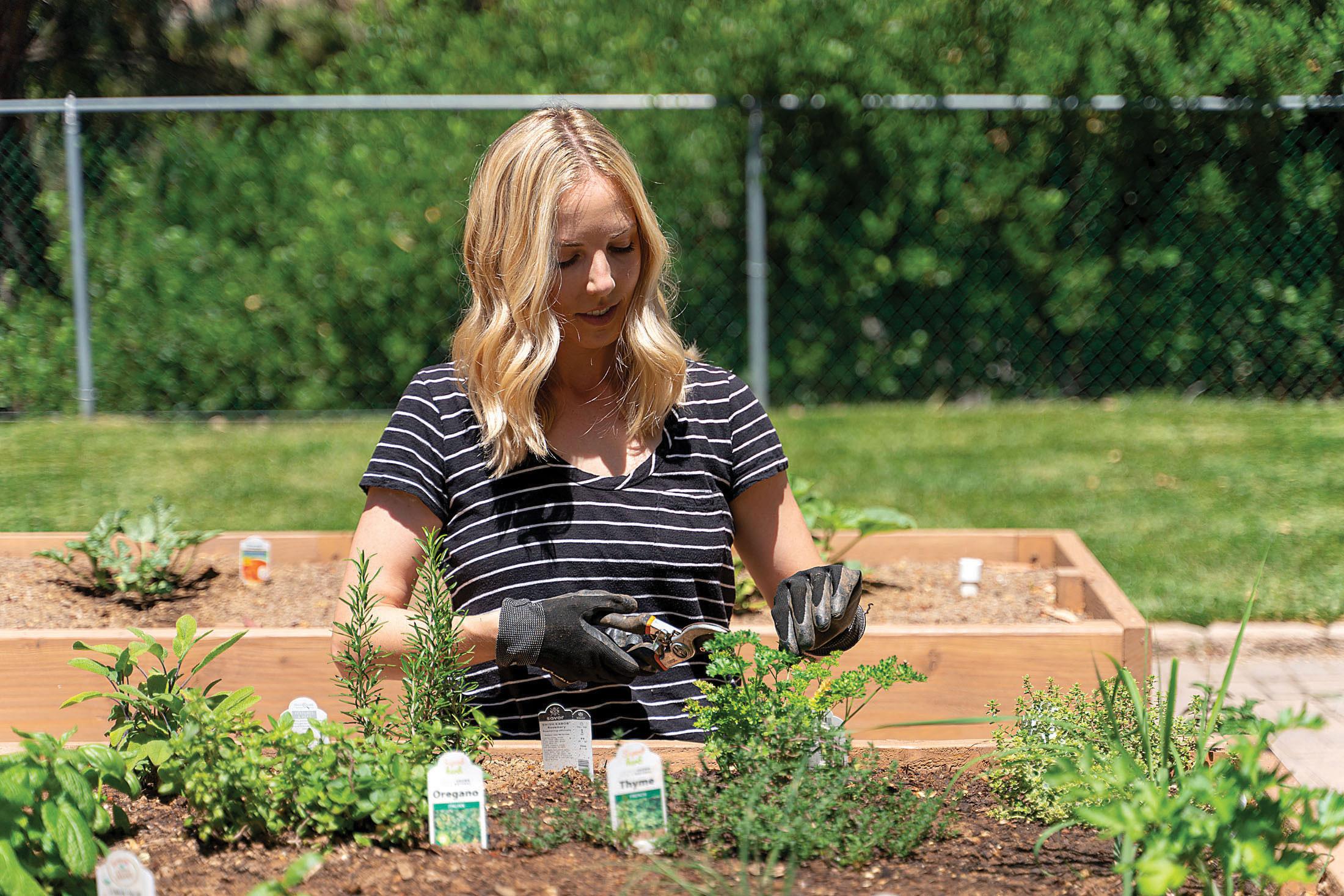 kait schulhof a clean bee gardens in her backyard kitchen garden