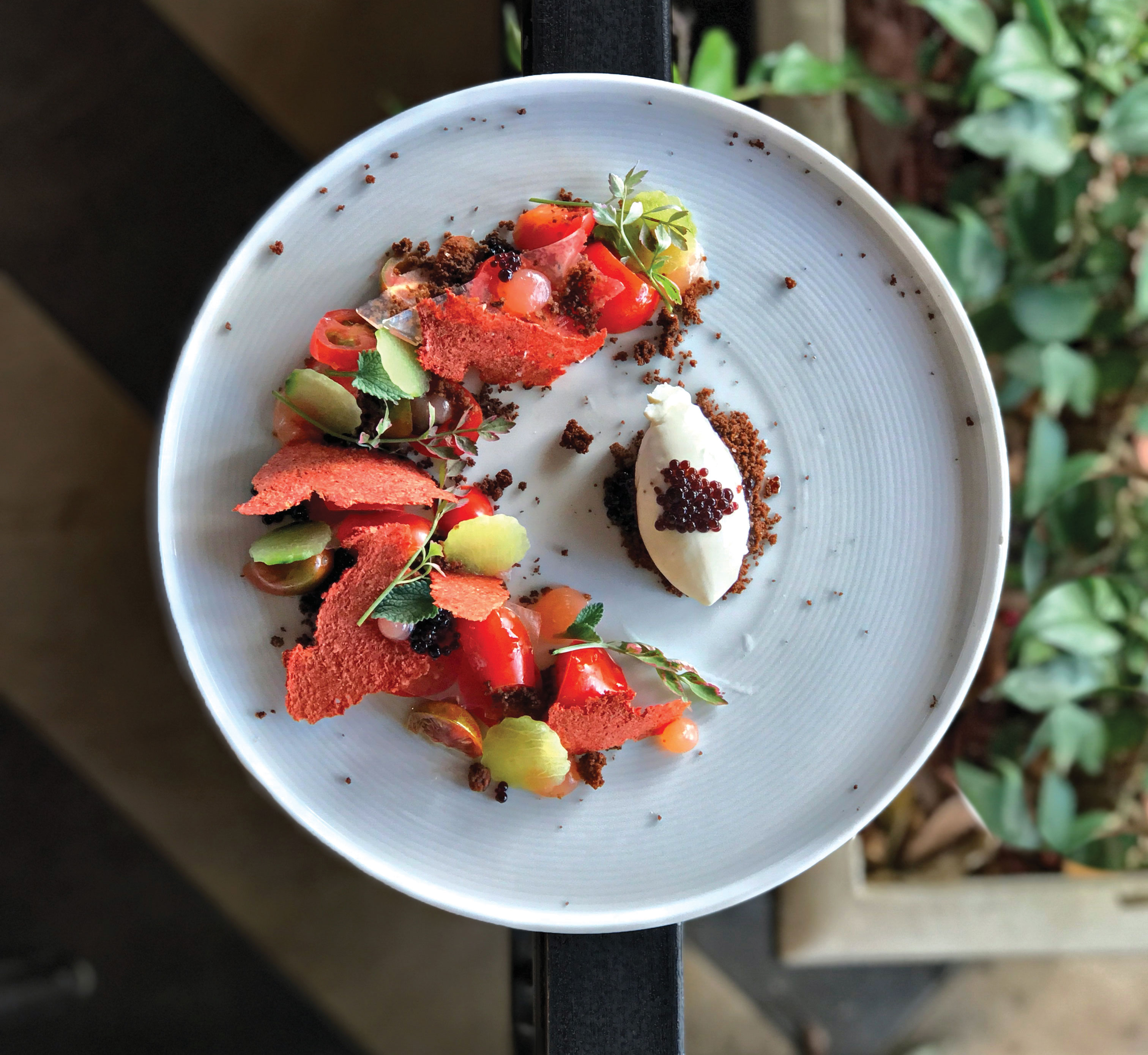 avant rancho bernardo inn heirloom tomato salad with burrata and pumpernickel