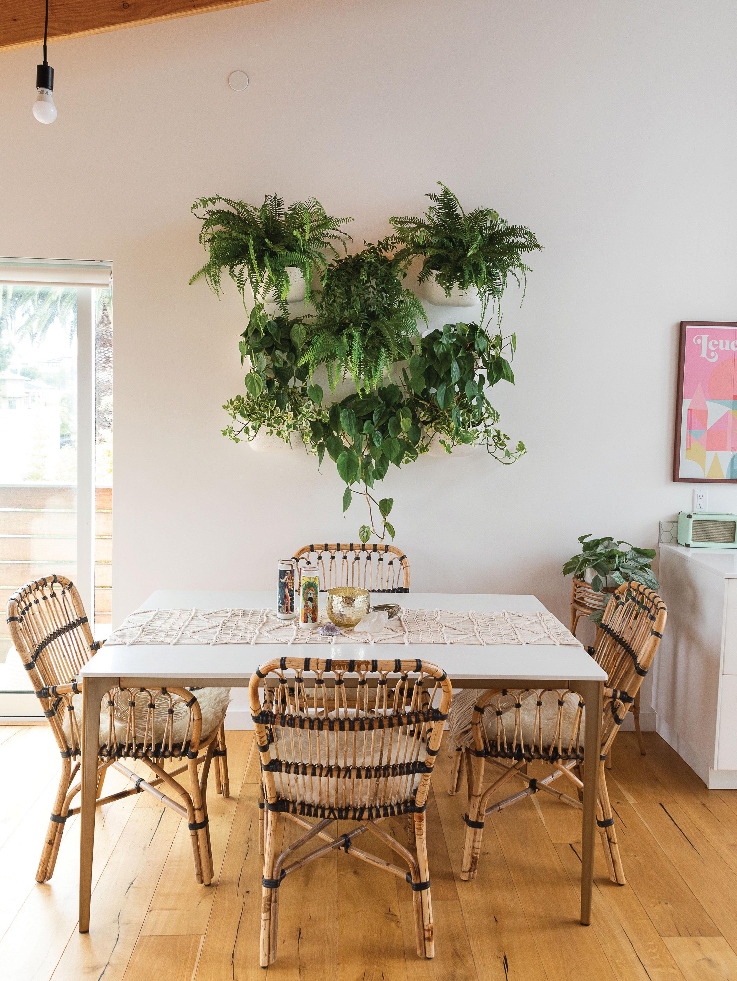 houseplants hanging wall planters wallygro