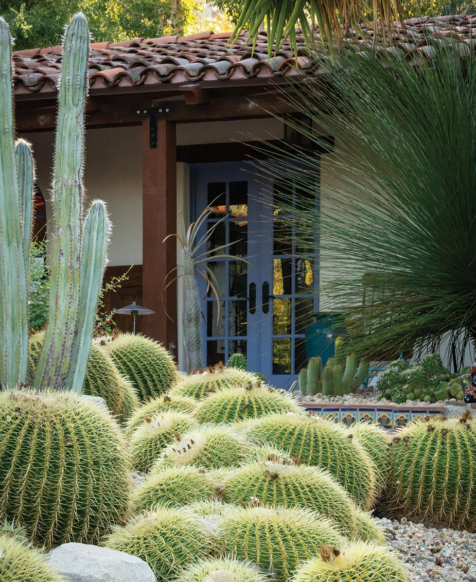 succulents golden barrel cacti adobe door hidden lake ranch