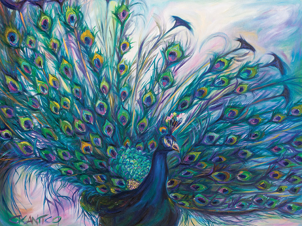 tetrachromat fanfare concetta antico san diego animal painters painter pets peacock painting