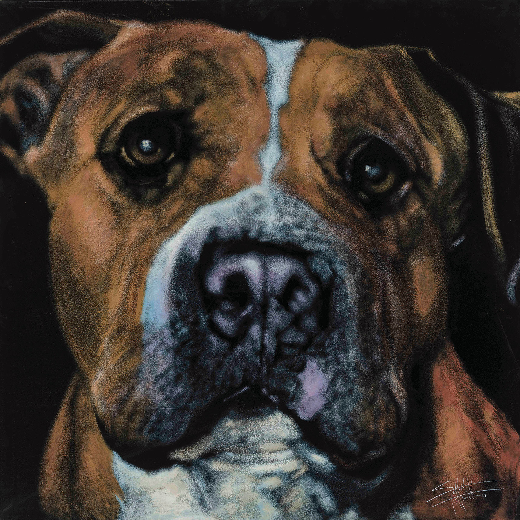 stephen fishwick san diego pet artists artist painter paintings dog