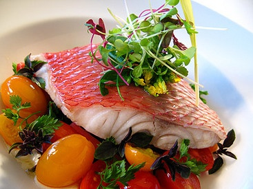 herb grower bath and kitchen showplace san diego microgreens on salmon