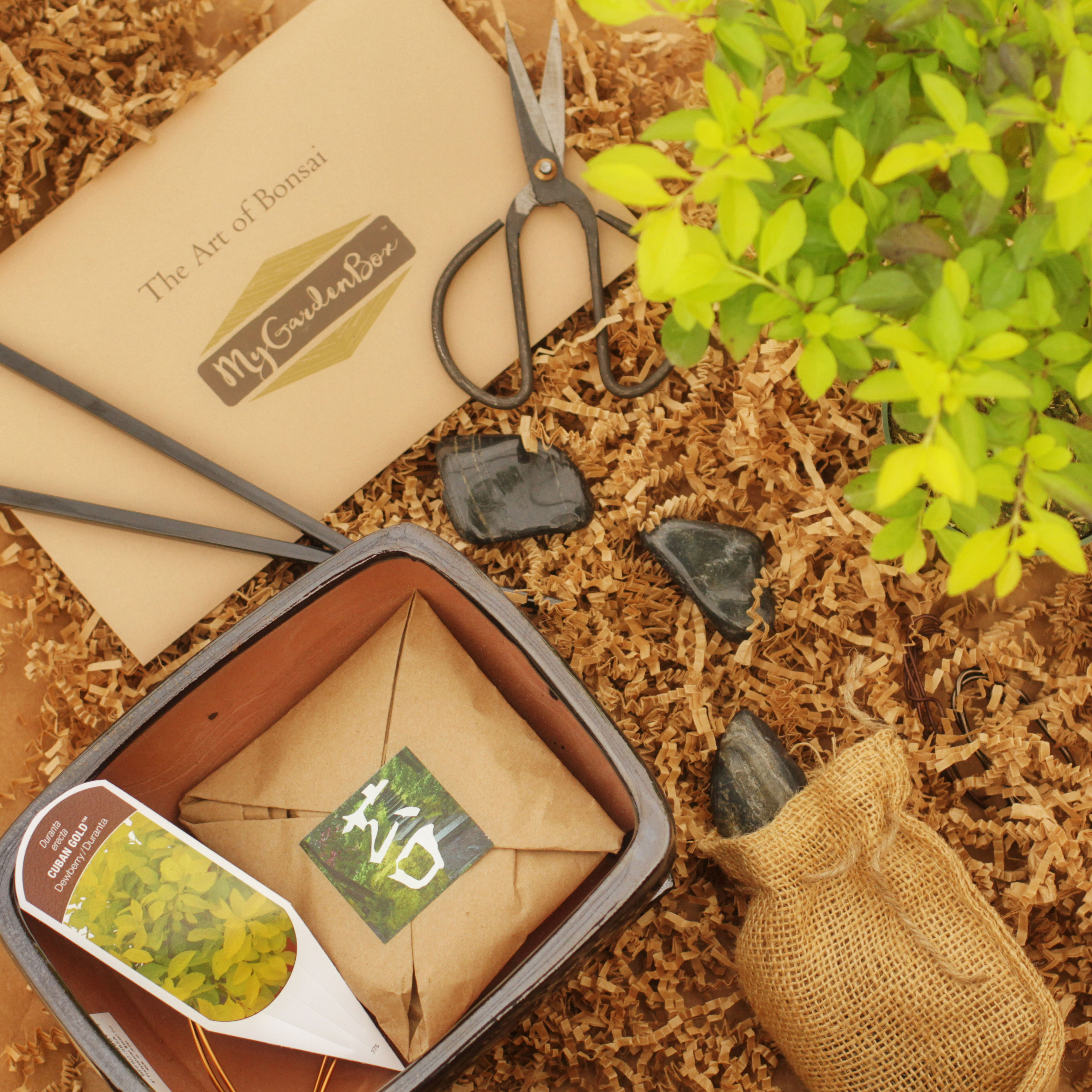 garden gift guide subscription box my garden box