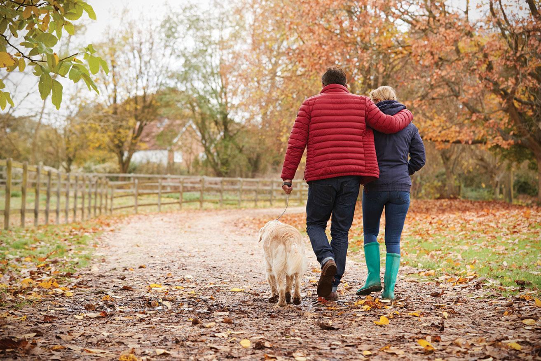 Thanksgiving pets walk