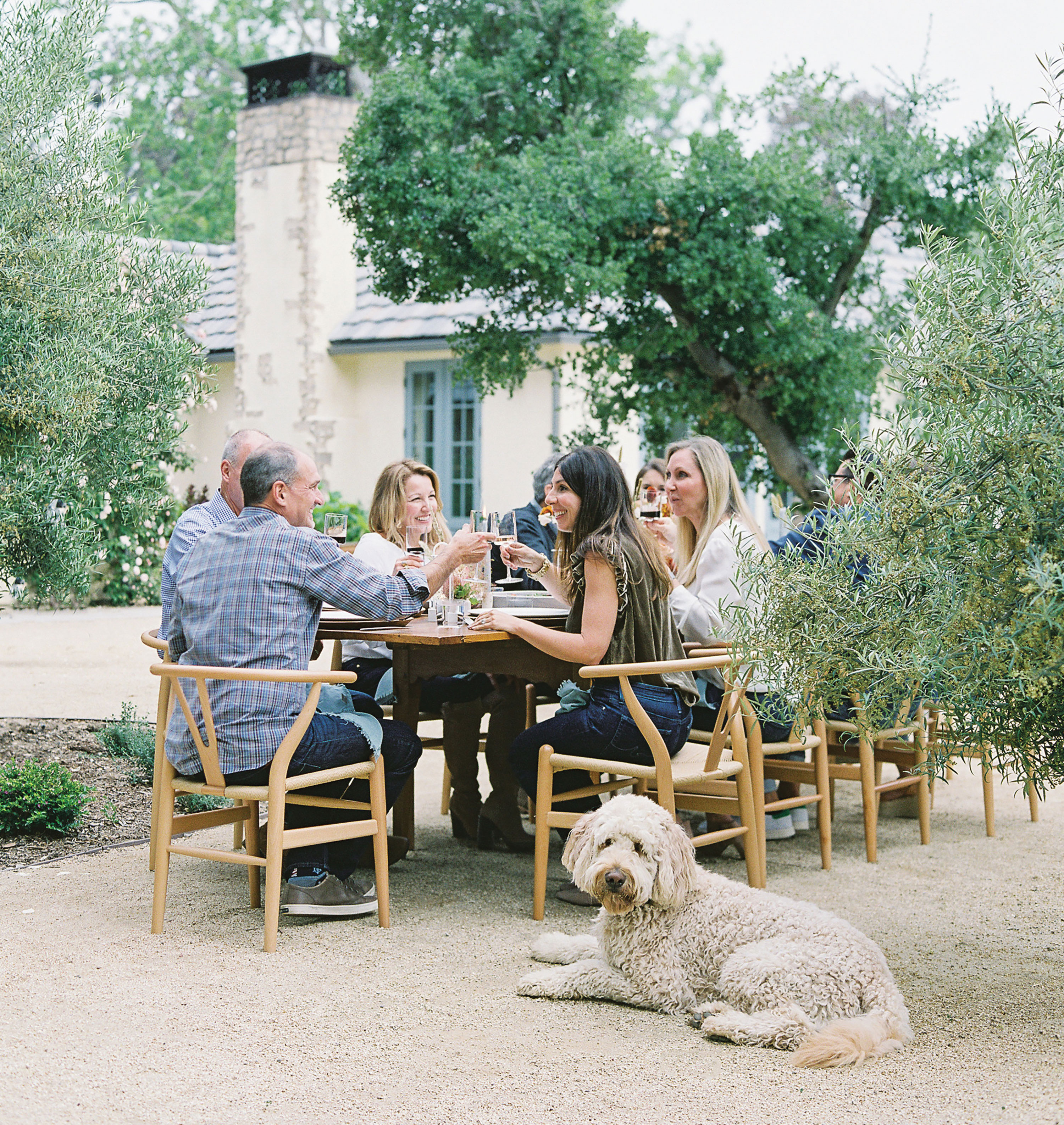 outdoor thanksgiving friends toasting with dog