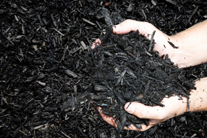 Black-Mulch-Hands J